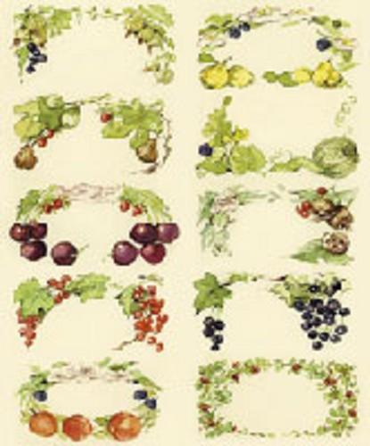 Geliefde gegomde etiketten, fruit klein (332) - jampot-etiketten - Bureaubewust GF55